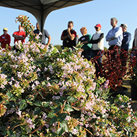 A crowd gathers at a past Ornamental Horticulture Research Field Day at UGA's Durham Horticulture Farm. This year's tour, which is free and open to the public, will be Oct. 6.