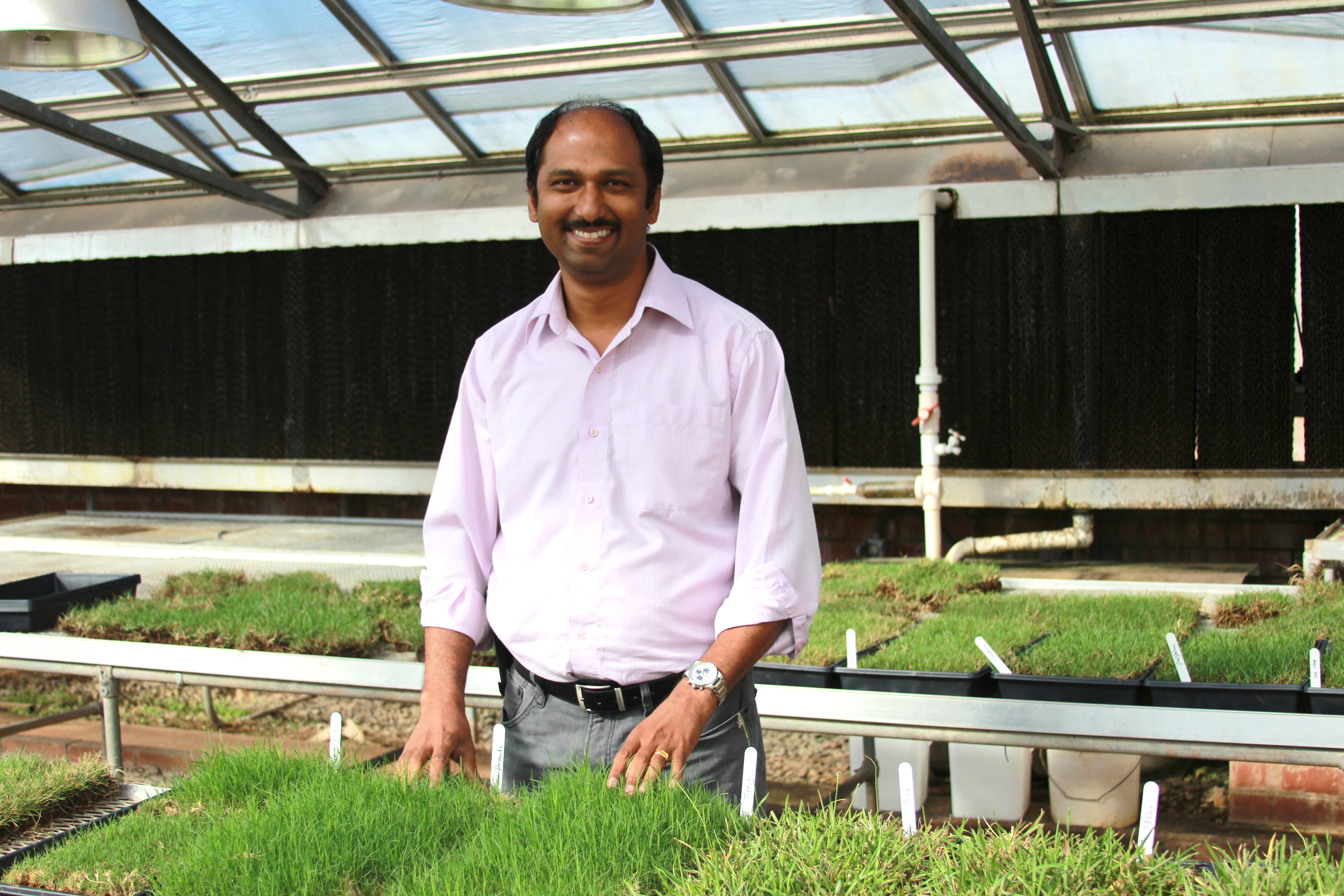 Shimat Joseph, an entomologist based on the University of Georgia Griffin campus, conducts research on turfgrass and ornamental plant pests. Joseph also works with UGA Cooperative Extension agents and teaches an entomology laboratory course for UGA students enrolled in the plant protection and pest management master's degree program.