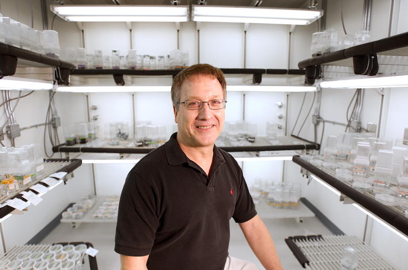 Wayne Parrott, professor of crop and soil sciences at the University of Georgia, believes that genetically improved plants will help feed the world, and he's traveled the globe to help connect farmers and scientists with what they need to make that happen. Since coming to UGA in 1988, Parrott's laboratory has served as an international flagship for genetic research in soybeans and other crops. He's spent almost the last three decades not only developing new soybean varieties and researching the human and environmental safety of genetically modified crops.