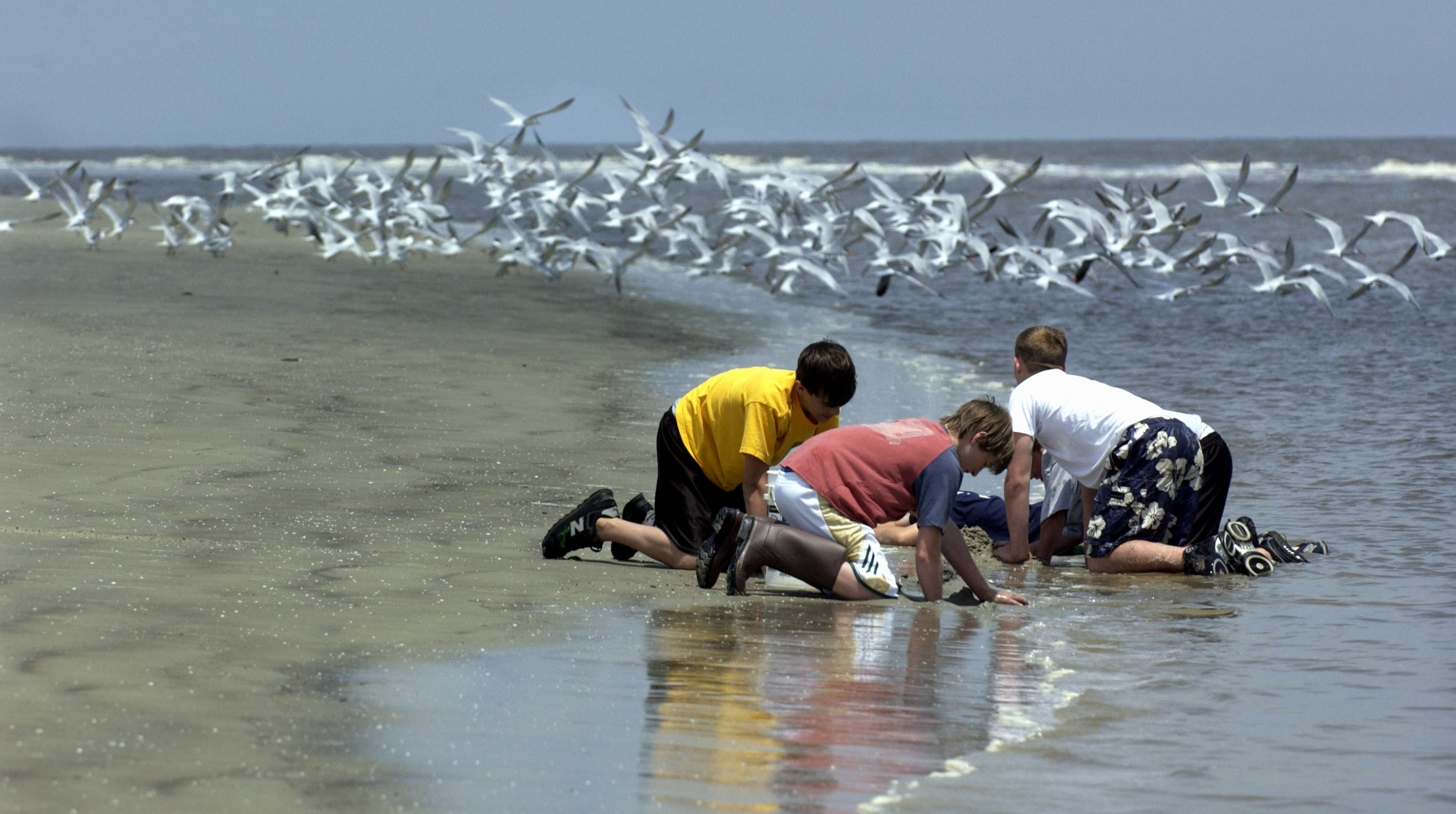 Students participate in an Environmental Education class on the beach at the Jekyll Island 4H Center at Jekyll Island, Ga. May 2, 2005.