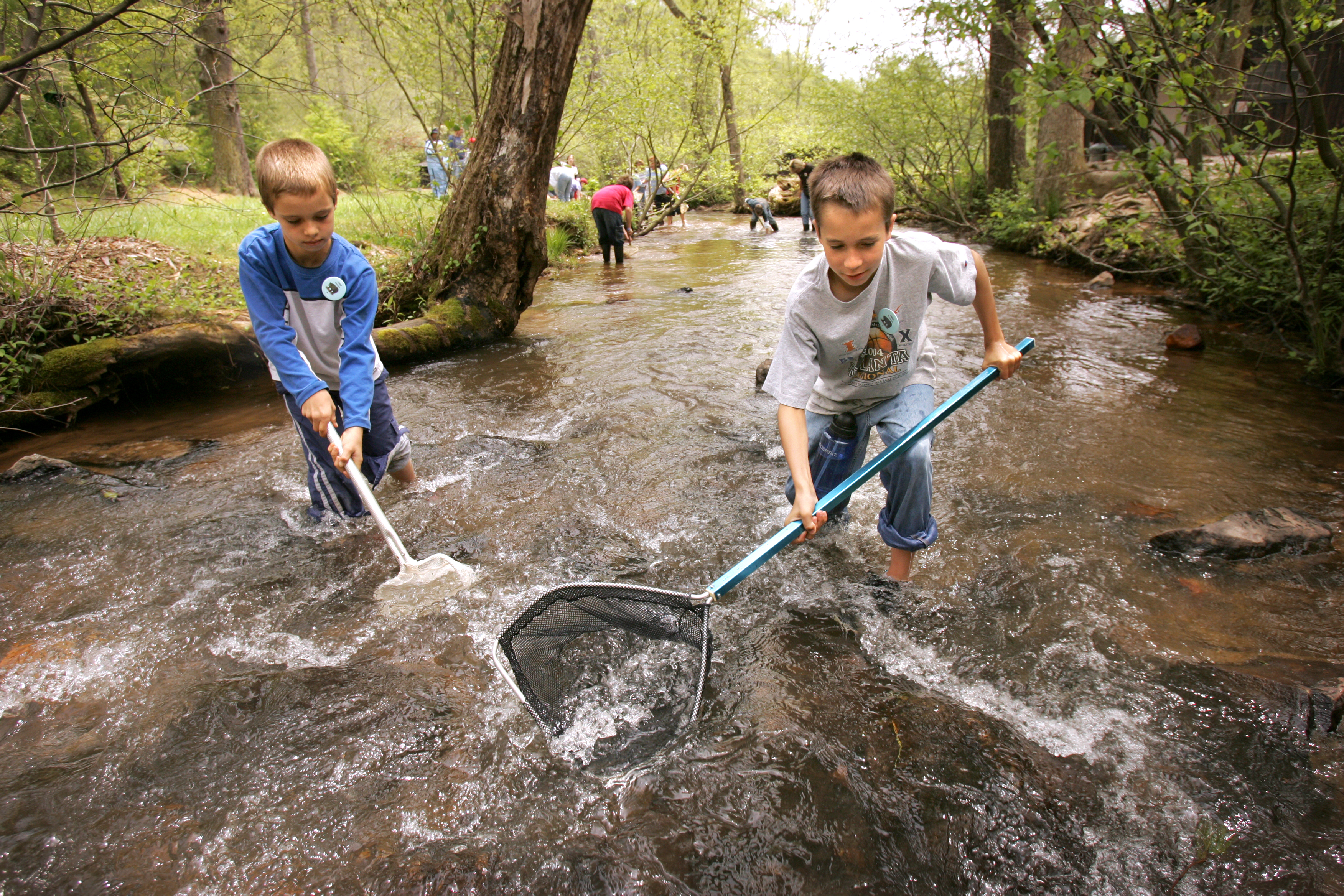 Alpharetta Elementary 4th graders from left Joey Santoro, 10, and Neal Seaman, 10, search a stream for life during environmental education at Washega 4H camp in Dahlonega, Thursday, April 28, 2005.