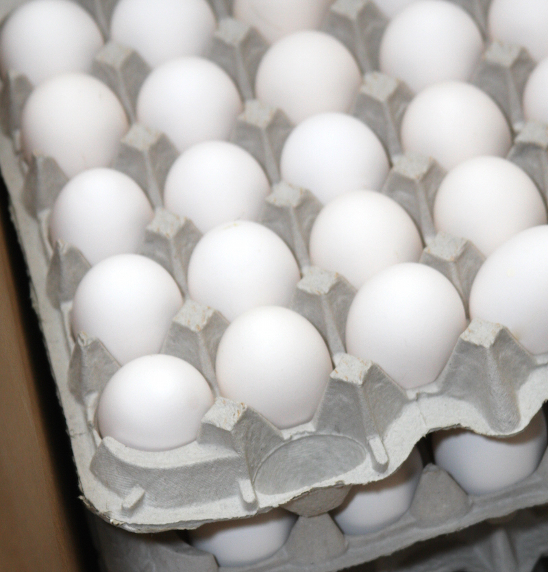 Cartons of eggs at a UGA research facility.