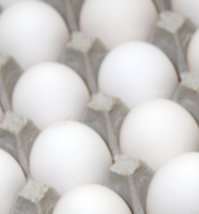 Salmonella in eggs can be destroyed with proper cooking and prevented through proper hen testing.