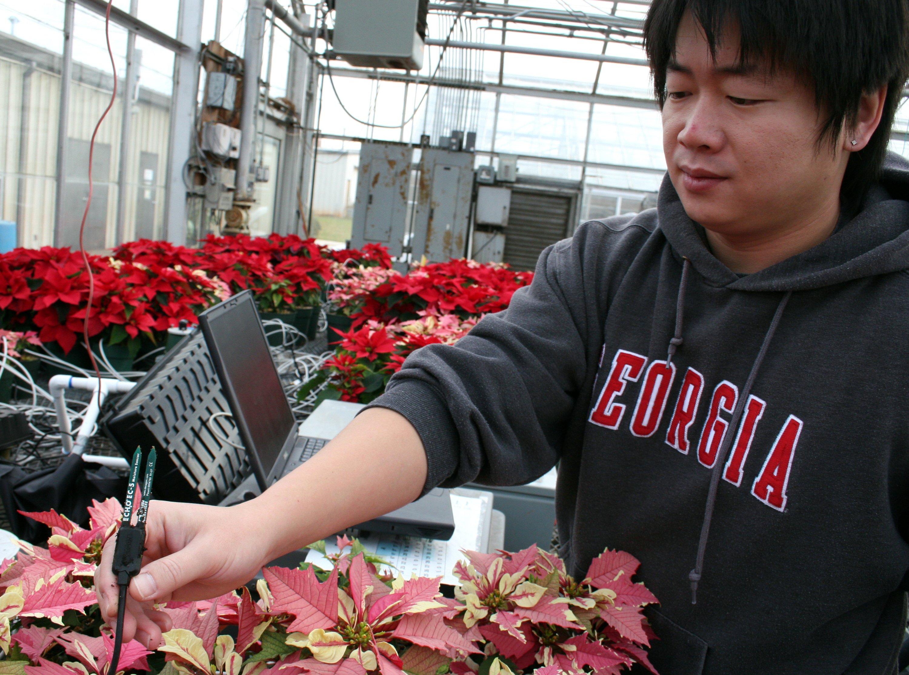 Jongyun Kim shows a soil moisture sensor he and UGA professor Marc van Iersel are using to monitor the water needs of their plants.