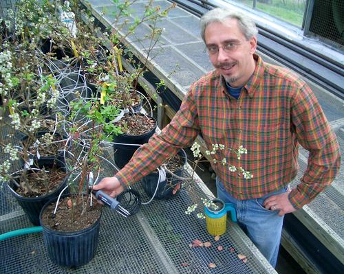 UGA horticulture professor Marc van Iersel shows one version of a soil moisture sensor he tested.