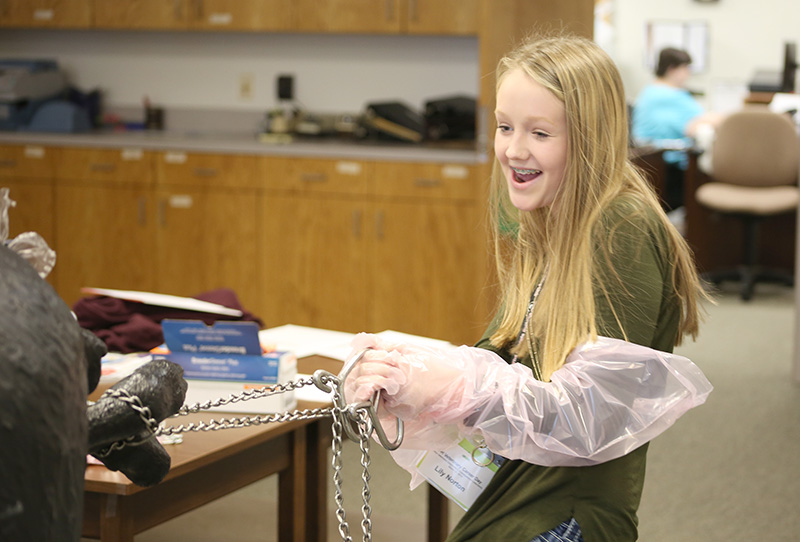 Grady County 4-H member Lilly Norton works with a calving simulator to deliver a calf.