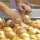 Workers at Bland Farms sort Vidalia onions.
