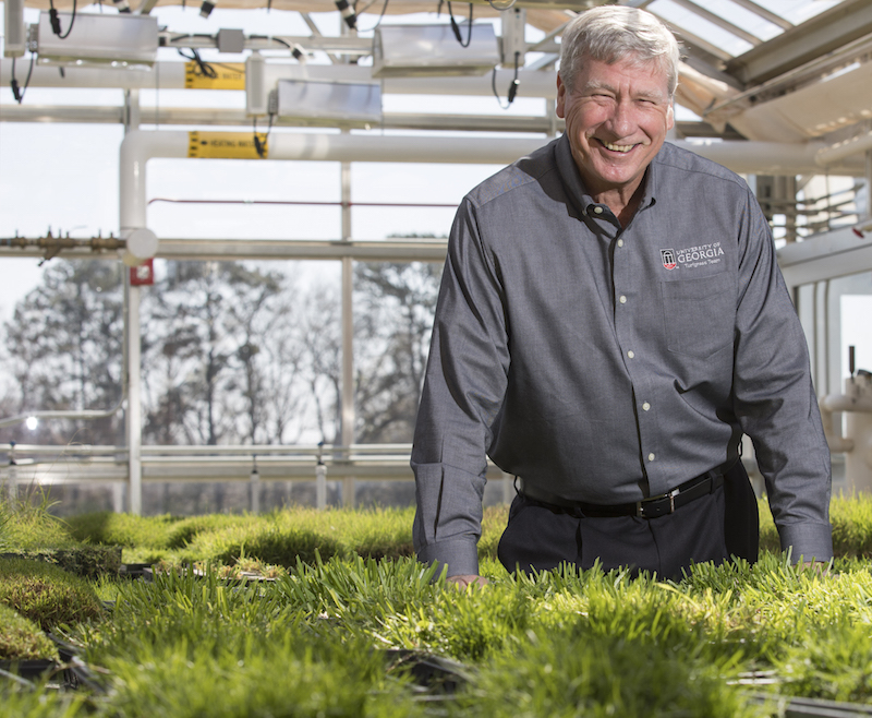 University of Georgia Professor Paul Raymer has served Georgia agriculture as a variety tester, a soybean specialist, a canola breeder and a turfgrass breeder. For the past 15 years, he has focused on developing improved cultivars of seashore paspalum, tall fescue and creeping bentgrass for high-stress environments.