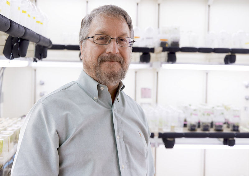 Wayne Parrott, a professor in the University of Georgia College of Agricultural and Environmental Sciences, is one of the world's leading authorities on soybean genomics and enabling technologies for the improvement of crop plants.