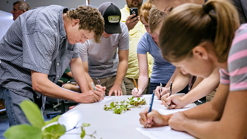 Students can study at the UGA Tifton campus in the College of Agricultural and Environmental Sciences.