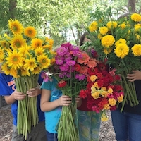 Rita and Mike Williams's four children holding flowers at their cut flower farm, WilMor Farms, in Candler County, Georgia.