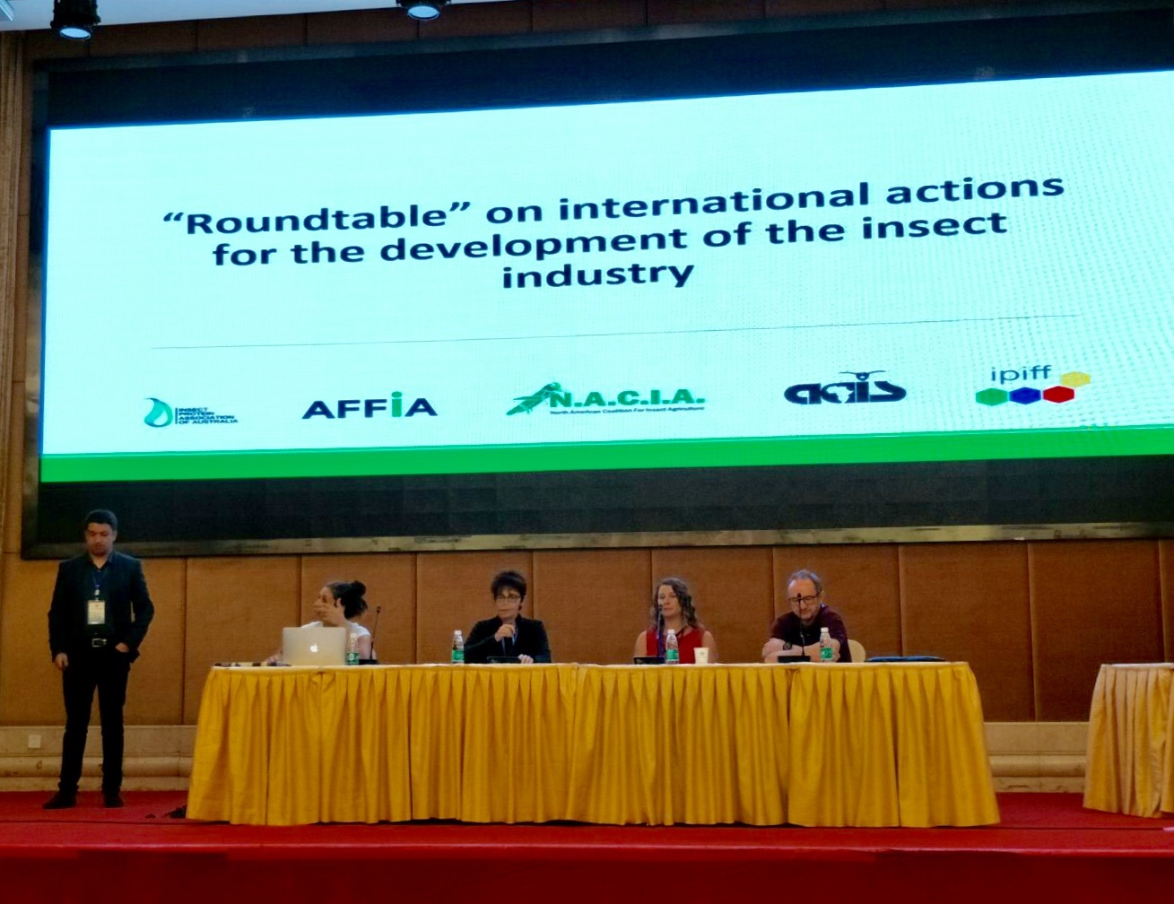 """UGA entomologist, in the red dress, participated in a roundtable discussion on the future of insect agriculture at the second """"Insects to Feed the World"""" conference in Wuhan, China."""