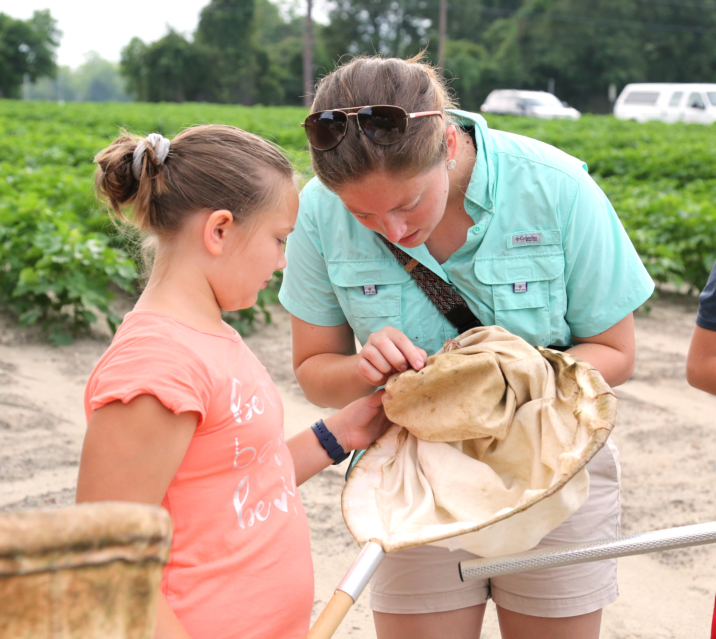 Crawford County ANR and 4-H agent Sarah Greer looks in a sweep net to see if her 4-H student caught any insects.