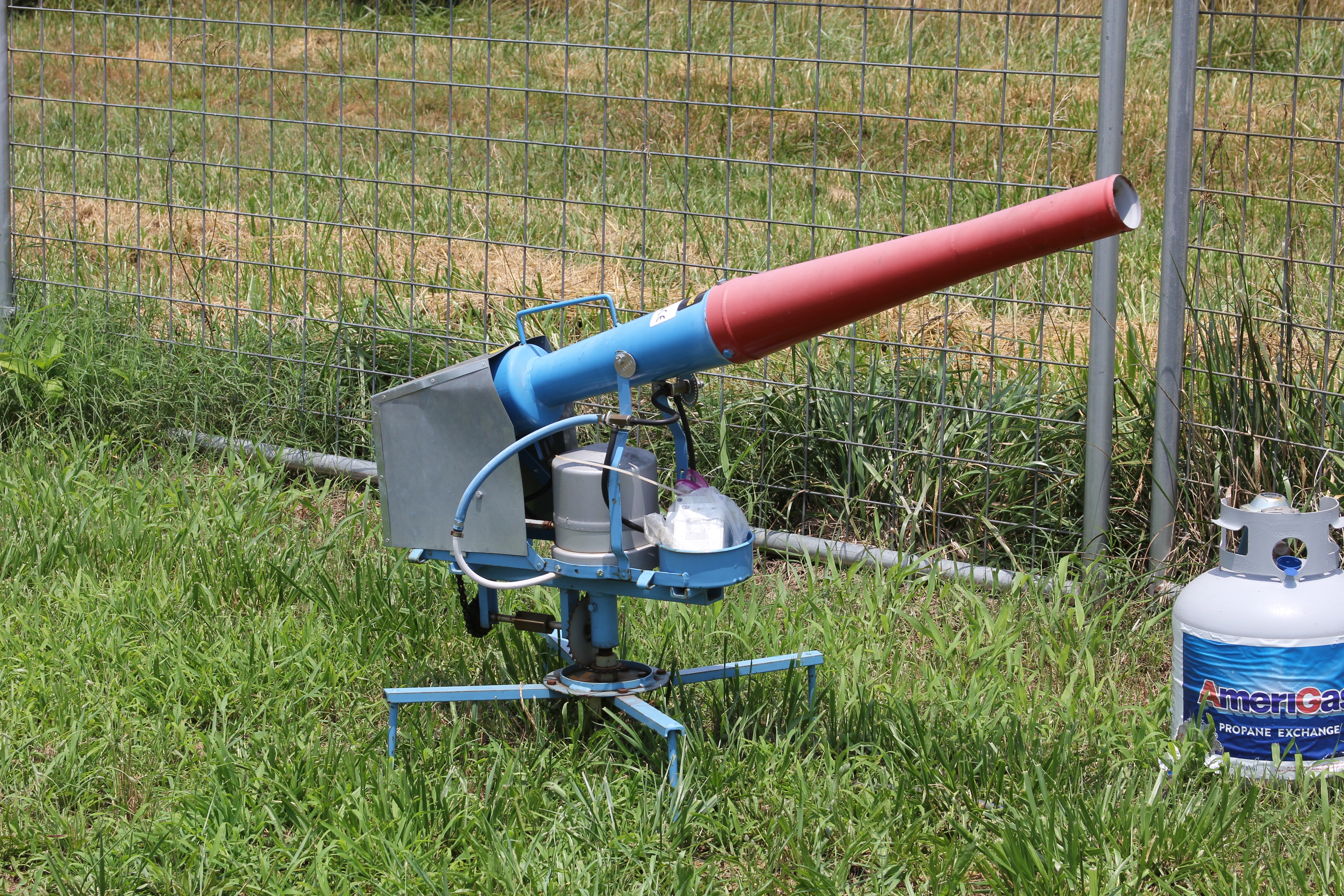 The blueberry research fields on the University of Georgia Griffin campus are equipped with an automatically firing carbide air cannon to help keep the birds away from the berries. The cannon produces a thunderclap-like sound to deter birds and other wildlife and is among the tactics used at airports to scare birds away from aircraft.