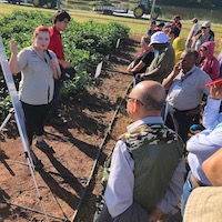 Wayne Parrott Soybean Lab research technician Lauren Lail explains the lab's engineered soybean plot at UGA's Iron Horse Farm during the 2018 Soybean Breeders Tour.