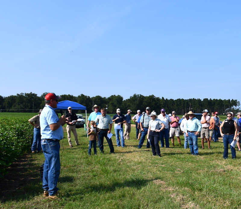 The University of Georgia Southeast Georgia Research and Education Center (SREC) in Midville, Georgia, will host its annual field day on Wednesday, Aug. 14.