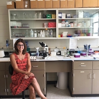 Kristen Navara, associate professor of poultry science, studies the link between stress hormones and biological sex.