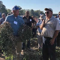Bob Kemerait, UGA Cooperative Extension plant pathologist, holds up freshly dug peanut plants at Charlie Cromley's farm in Bulloch County, Georgia, while Cromley addresses the crowd at the 2018 Georgia Peanut Tour.