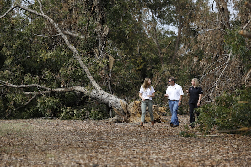 UGA Extension agents Nan Bostick (left) and Lindsey Hayes (right) tour one of Rob Cohen's (center) pecan orchards in Decatur County, Georgia, following Hurricane Michael.