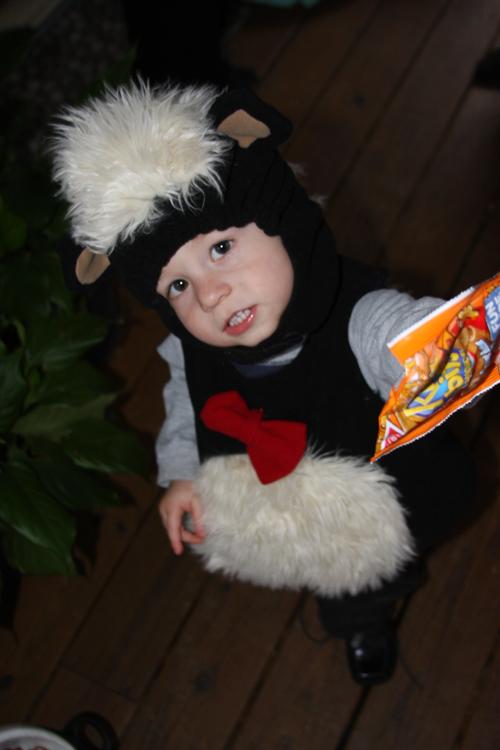 Halloween Skunk 1