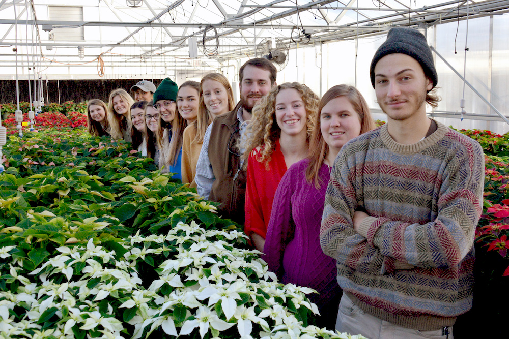 Students in University of Georgia's Tau chapter of the national Pi Alpha Xi (PAX) horticulture honor society are selling locally grown poinsettias and will take orders until Dec. 8.