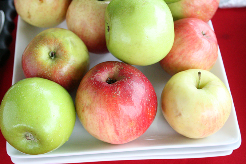 Fall is apple time in north Georgia. It's the one time of year Georgians find locally grown versions of this fruit.