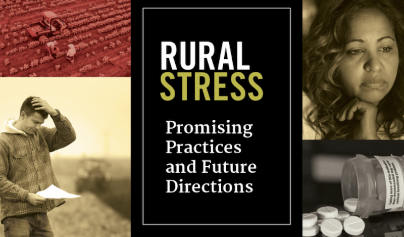 """Rural Stress: Promising Practices and Future Directions,"" an interdisciplinary roundtable on the challenges facing rural America, will be held in Atlanta Dec. 10-11, 2018, at the Crowne Plaza Atlanta-Airport."