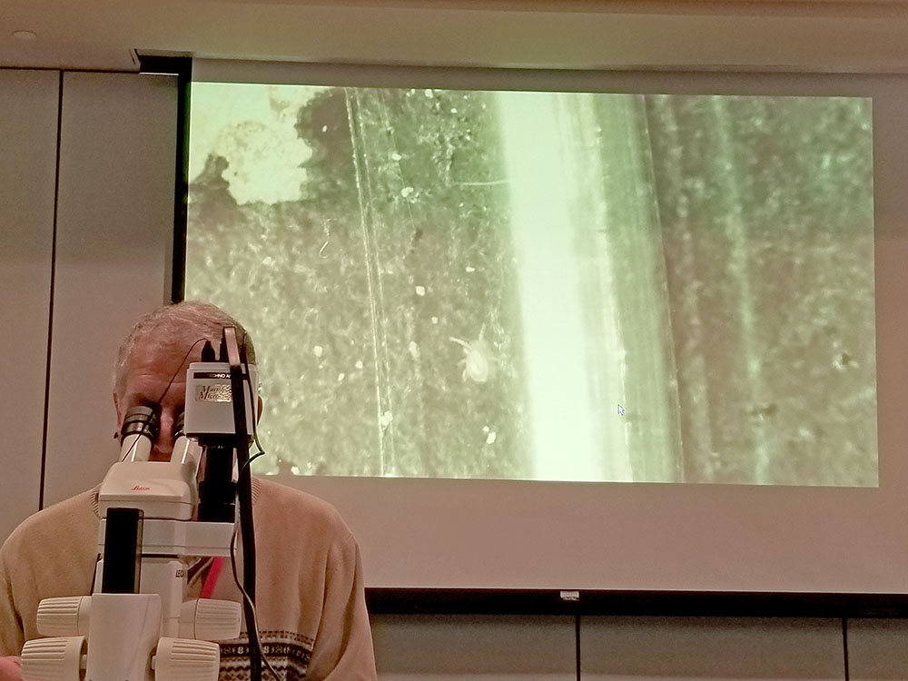 Professor and UGA Extension Entomologist Will Hudson projects images of a beneficial predator from his microscope during a presentation on beneficial insects.