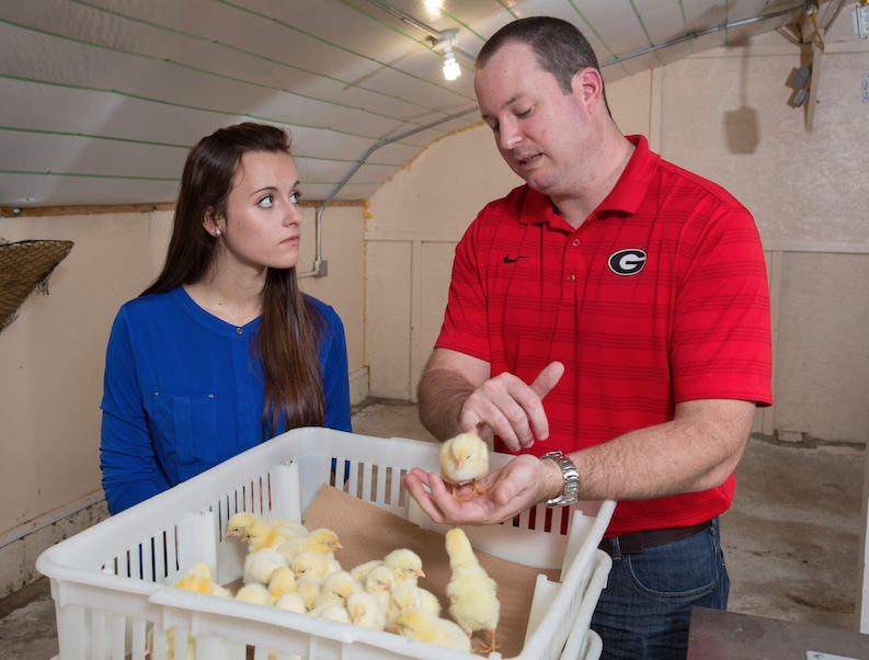 Brian Jordan (right), an assistant professor in the Department of Population Health and the Department of Poultry Science at the University of Georgia, is working to improve the vaccines available for poultry in hopes that they'll improve the well-being of chickens and protect the health of chicken consumers.