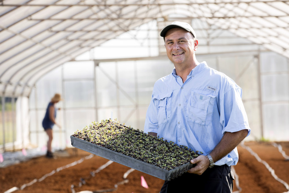 During Tim Coolong's years as a state vegetable specialist, his research focused on variety trials and developing irrigation and fertilization recommendations for farmers (photo by Dorothy Kozlowski).