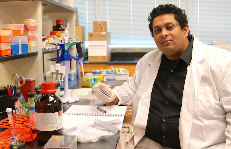 University of Georgia bacteriologist Govind Dev Kumar joined the faculty at the Center for Food Safety on the UGA Griffin campus in Griffin, Georgia, in September of 2018.