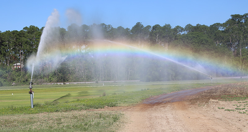 Irrigation at work on the UGA Tifton Campus. It is May 23 and has been a couple of weeks since South Georgia has received substantial rainfall. With little to no rain in the forecast, farmers are utilizing irrigation to water their crops.