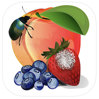 The MyIPM app is a free, mobile tool designed to promote integrated pest management for commercial fruit crop production. The app focuses on fruit crops grown in the Eastern U.S., including apple, blackberry, blueberry, bunch grape, cherry, cranberry, peach, pear and strawberry.