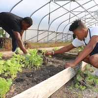 Students tend a raised bed at Warren County School. With just over the 600 students, the school system has one of the most robust farm-to-school programs in the state.