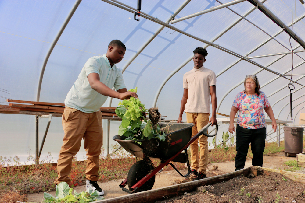 Warren County High School agriculture teacher Peggy Armstrong works with tudents as they clear out a raised bed at Warren County School's green school. With just over the 600 students, the school system has one of the most robust farm-to-school programs in the state.