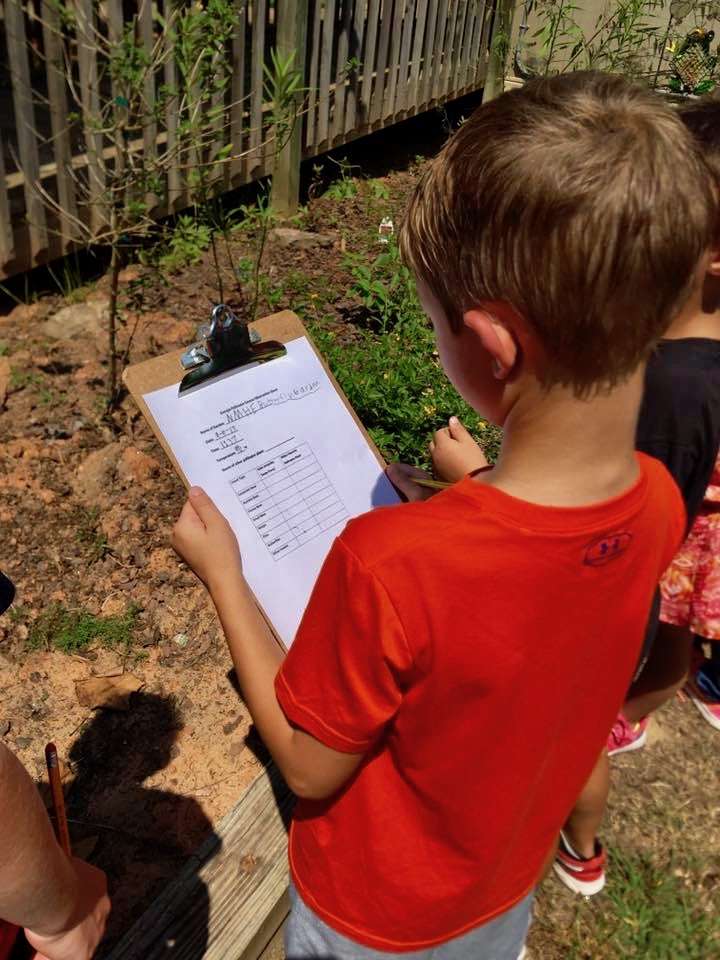 A student at New Mountain Hill Elementary School in Harris County, Georgia, practices counting pollinators in advance of the Great Georgia Pollinator Census, Aug. 23-24. Georgians who want to join the count should sign up at ggapc.org.