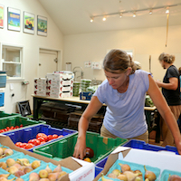 Celia Barss, the owner of Woodland Gardens in Winterville, Georgia, sorts tomatoes in the packinghouse on the organic farm. Barrs is one of the hundreds of Georgia farmers who attended produce safety courses held by UGA Extension over the past three years.