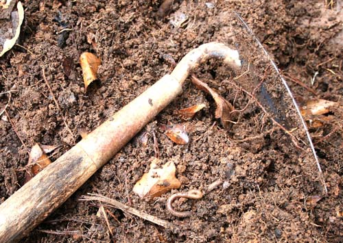 A garden hoe lies in a pile of fresh compost.