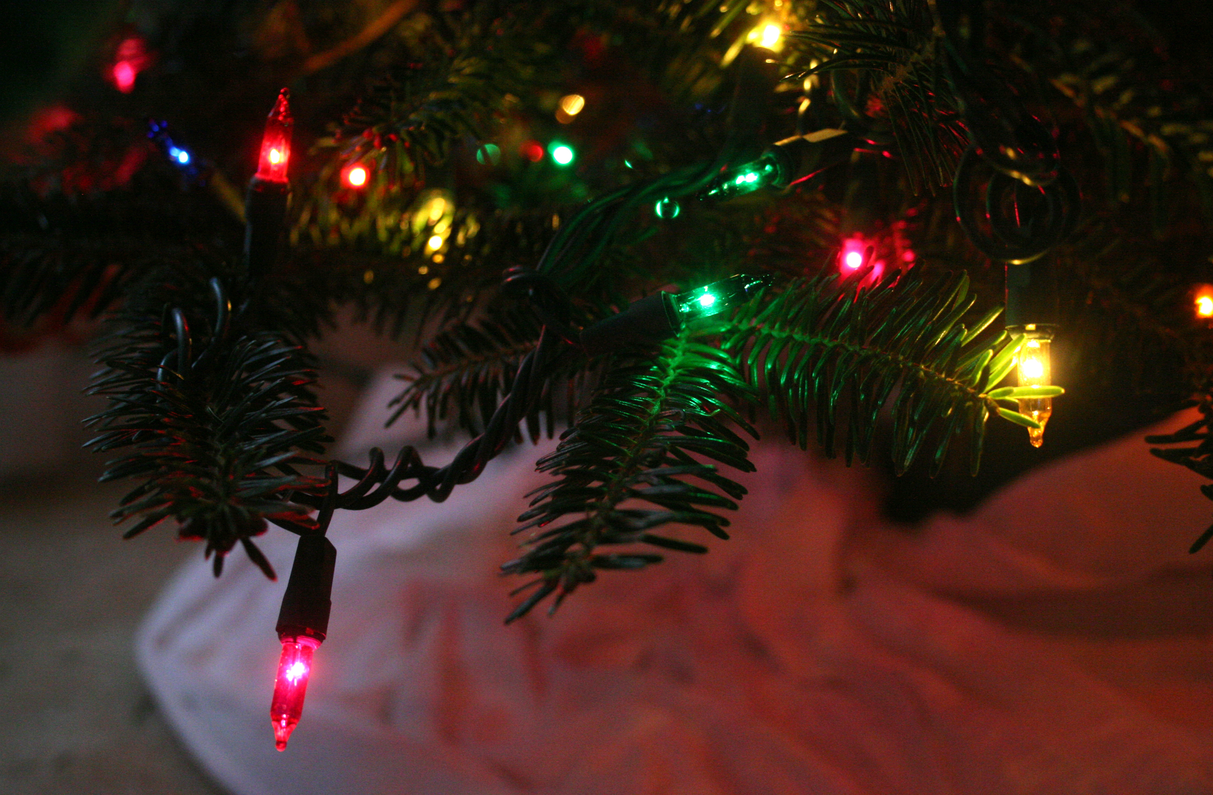 Save energy over the holidays by using LED lights and placing them on a timer.