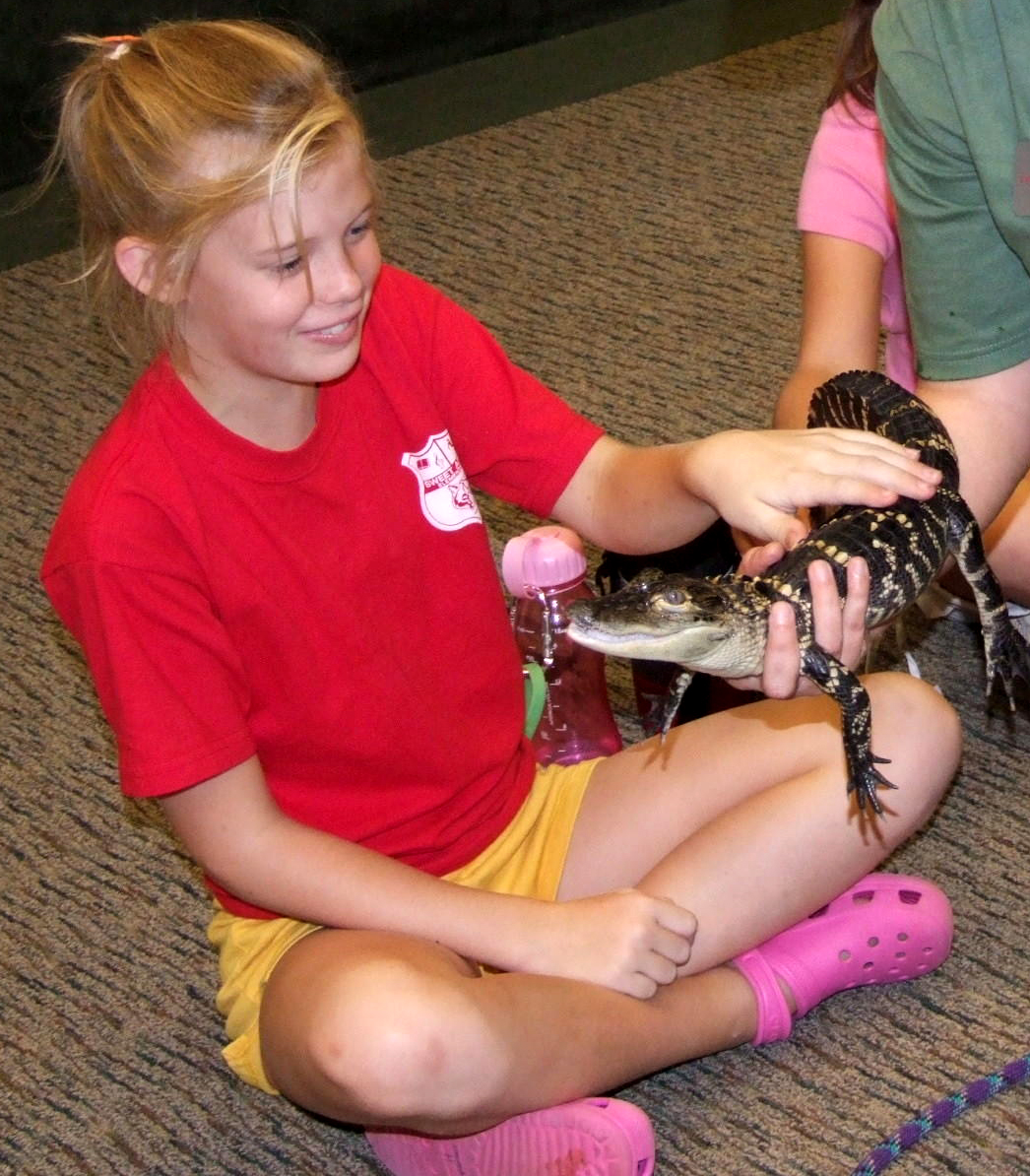 Feb. 19 will kick off the first 2011 Saturday at the Rock event. The day's topic will be Herpetology: the Study of Reptiles and Amphibians.