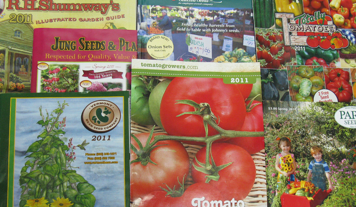 an assortment of seed catalogs download image