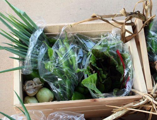 Community supported agriculture is one way to get fresh produce without having to plant a garden. Memberships in a CSA means a farmer gets guaranteed income, and customers get fresh vegetables weekly. Above is an example of a CSA box.