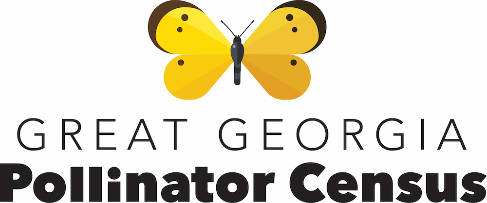 UGA Extension is looking for citizen scientist to help with the first-ever statewide census of pollinators, the Great Georgia Pollinator Census, on Aug. 23-24.