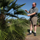 Gary Wade describes one of the palm trees growing in his test plot near Watkinsville, Ga.