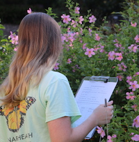 Creating a journal can be a great way to get youth learning and identifying pollinators outside.
