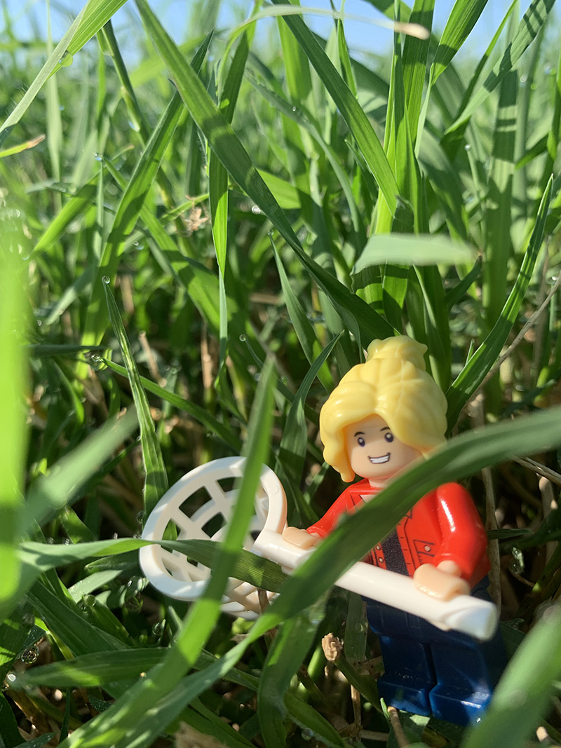 University of Georgia Cooperative Extension Forage Agronomist Lisa Baxter is using her social media savvy and love for Legos to share timely information with Georgia farmers.