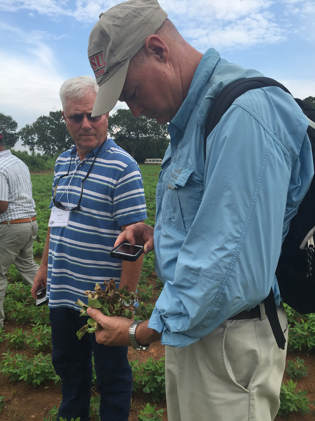 David Jordan, a crop science professor at North Carolina State University, is lead scientist on a project through the Peanut Innovation Lab at the University of Georgia to update a risk assessment tool for farmers in North Carolina and overseas partners. (Photo by Allison Floyd)