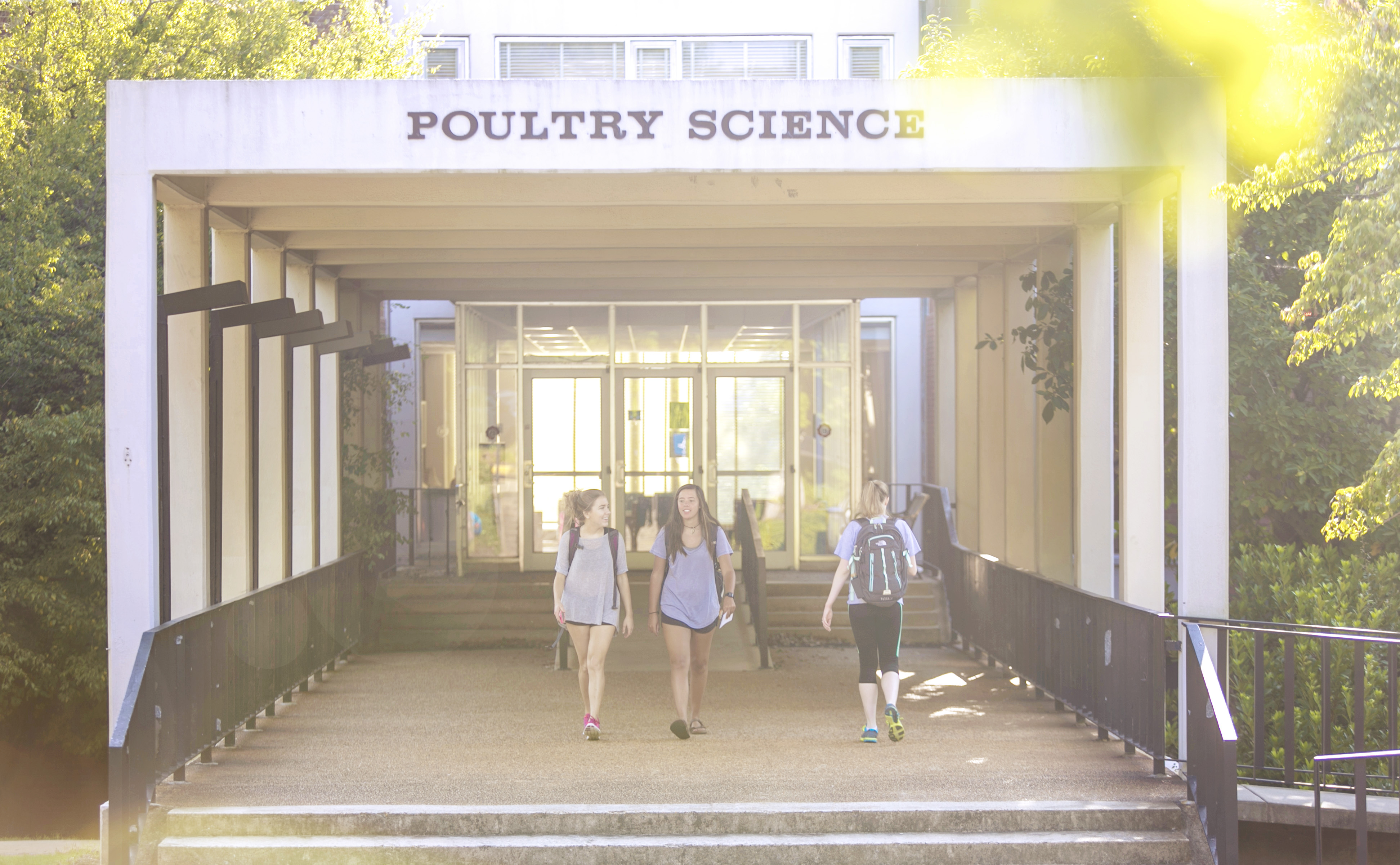 The $6.5 million in funding that USPOULTRY has provided to the UGA Department of Poultry Science supports both life-changing academic programs and world-changing research.