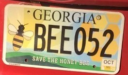 "Jennifer Berry, an apiculture research professional and lab manager for the University of Georgia Honeybee Program, proudly displays her ""Save the Honeybee"" Georgia license plate. Thanks to the work of the Georgia Beekeepers Association Georgians can now buy the tag at the GBA website (gabeekeeping.com)."