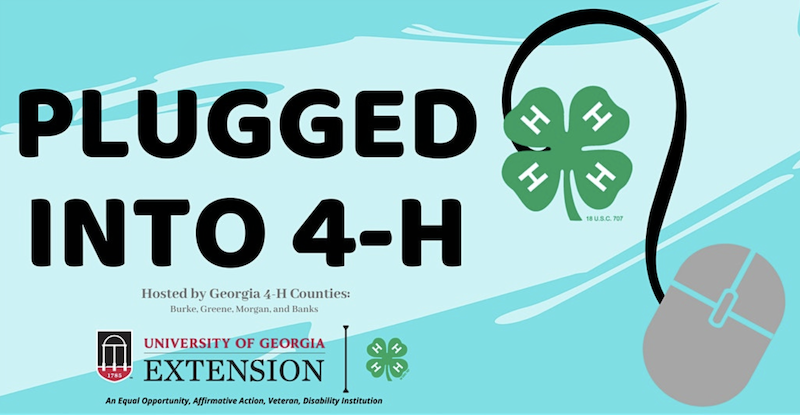 Lessons are being emailed to students daily from Georgia 4-H educators.